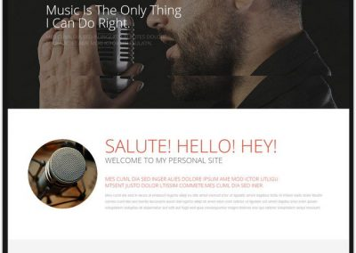 Singer Example Website
